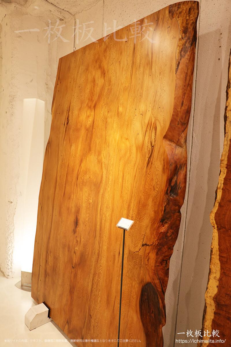 屋久杉の一枚板