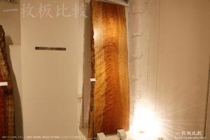 辺材の幅が広いアサダの一枚板テーブル