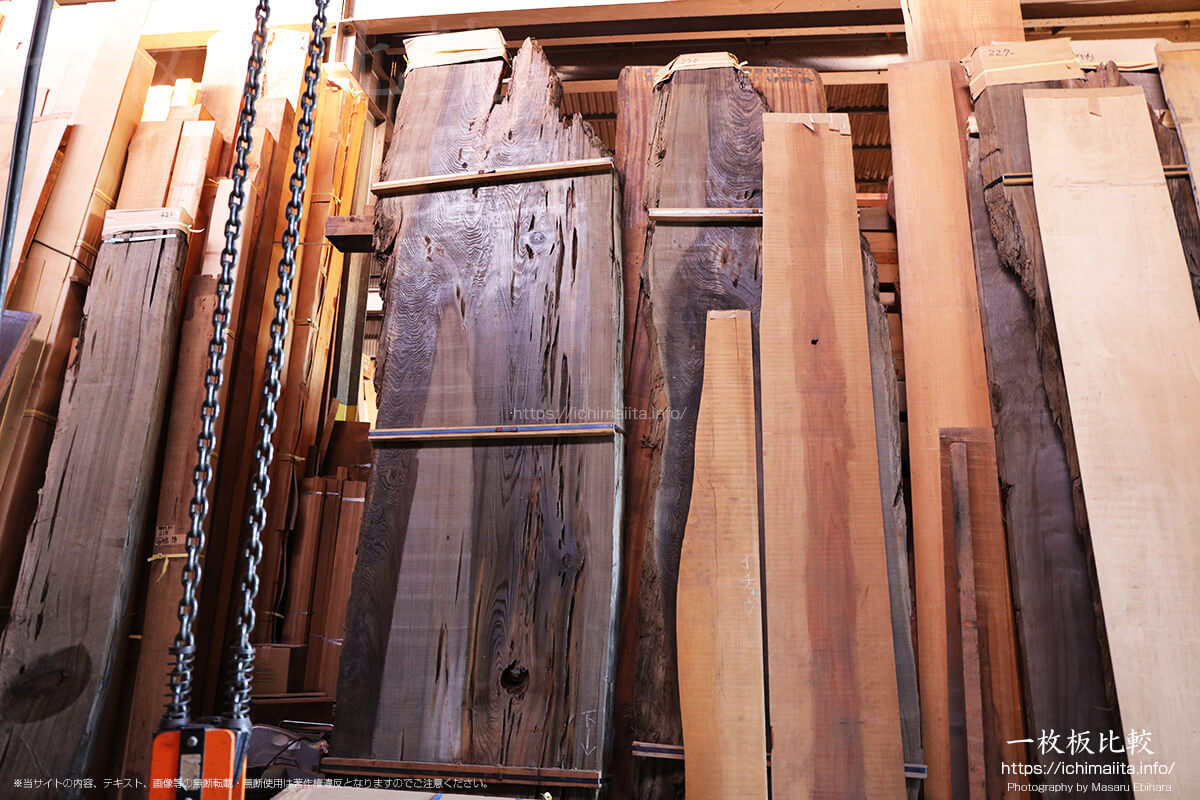 巨大な神代杉の一枚板