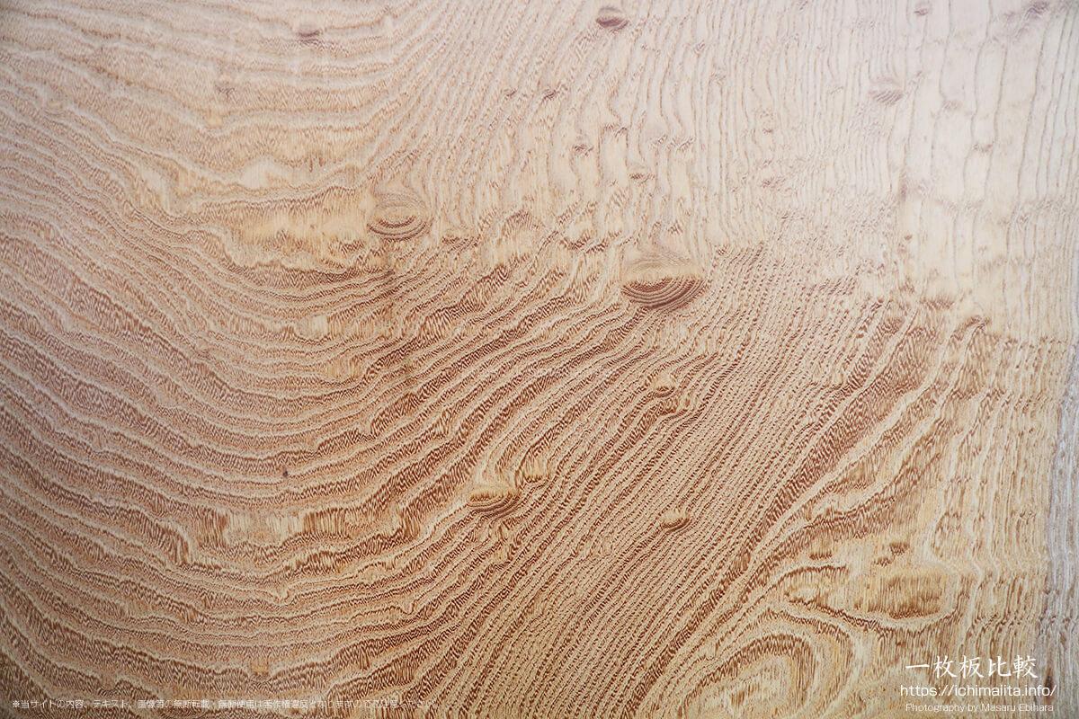 瀬尾木材で撮影した欅(ケヤキ)の玉杢