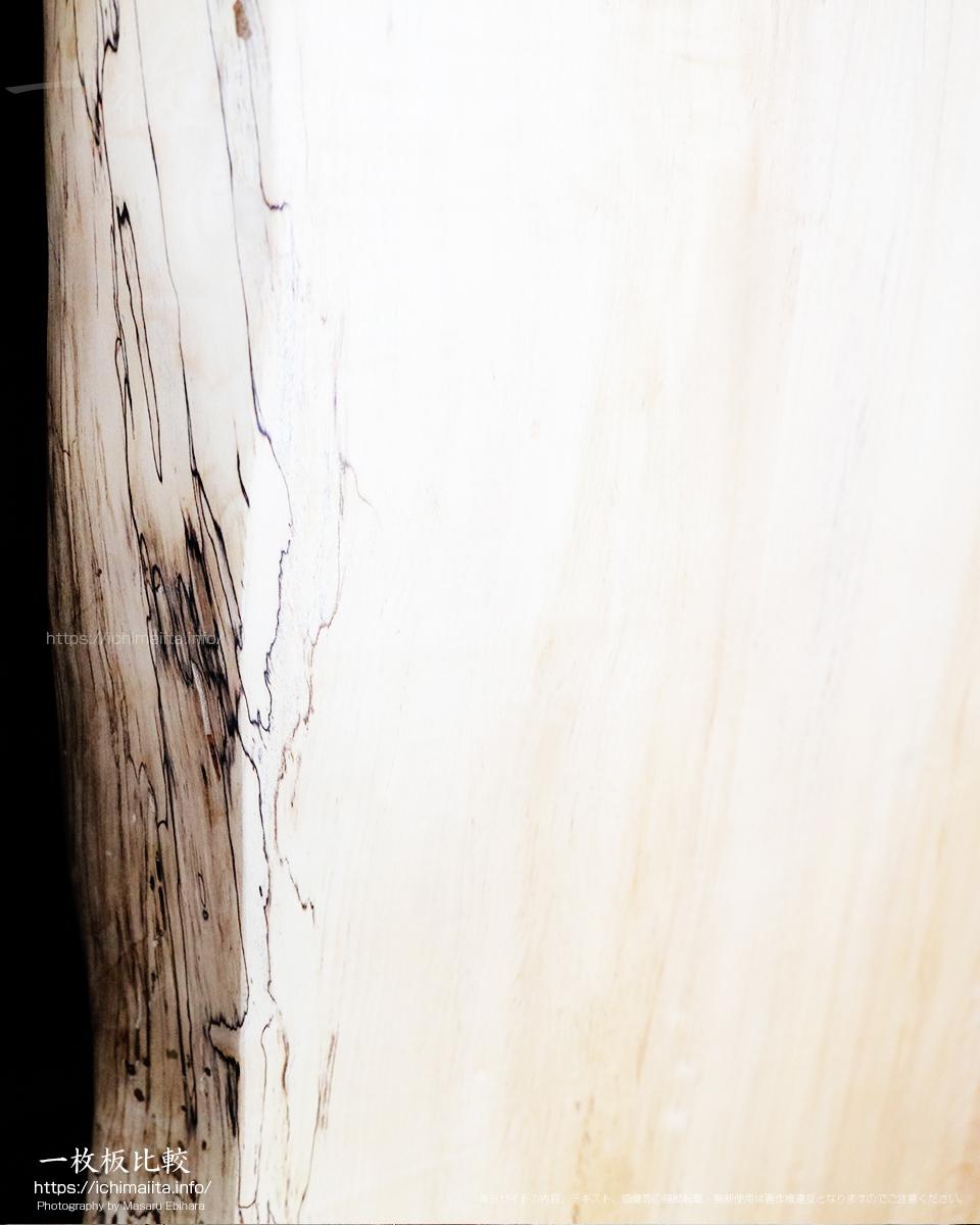 白い上に辺材部分にスポルテッドが発生した栃の一枚板