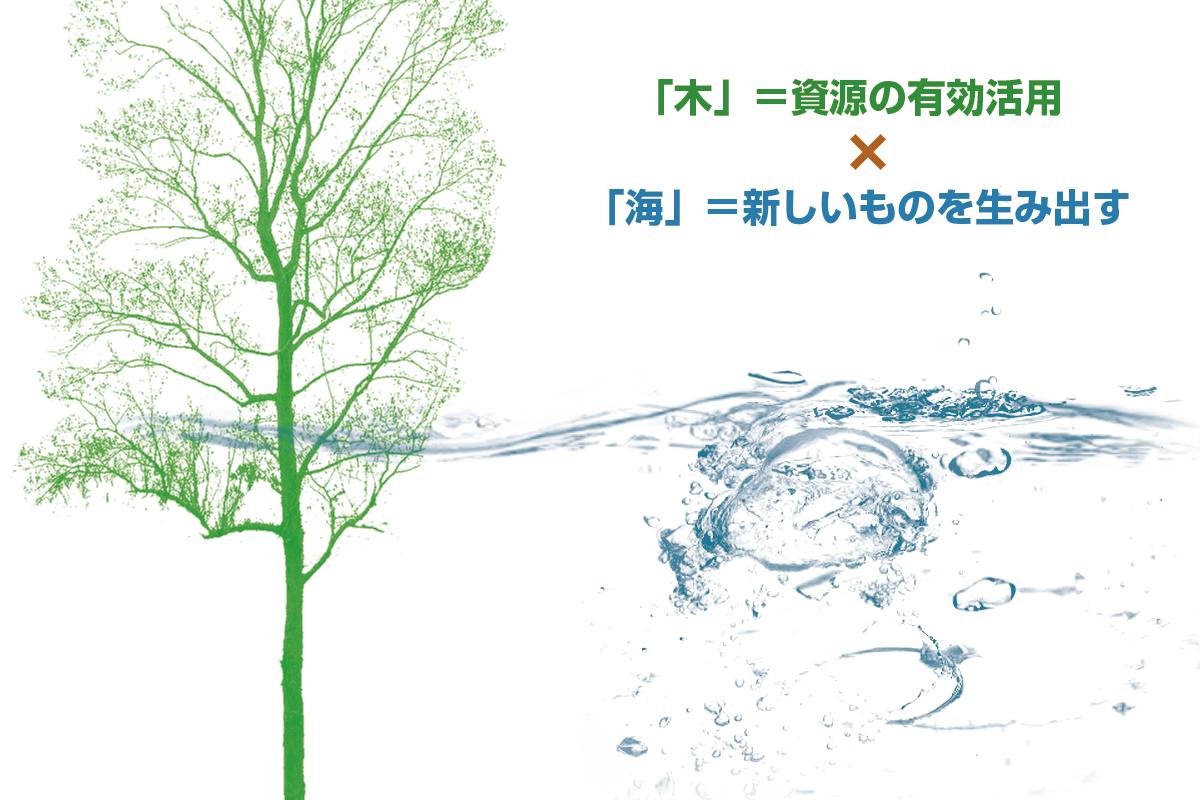 木と海の力関係