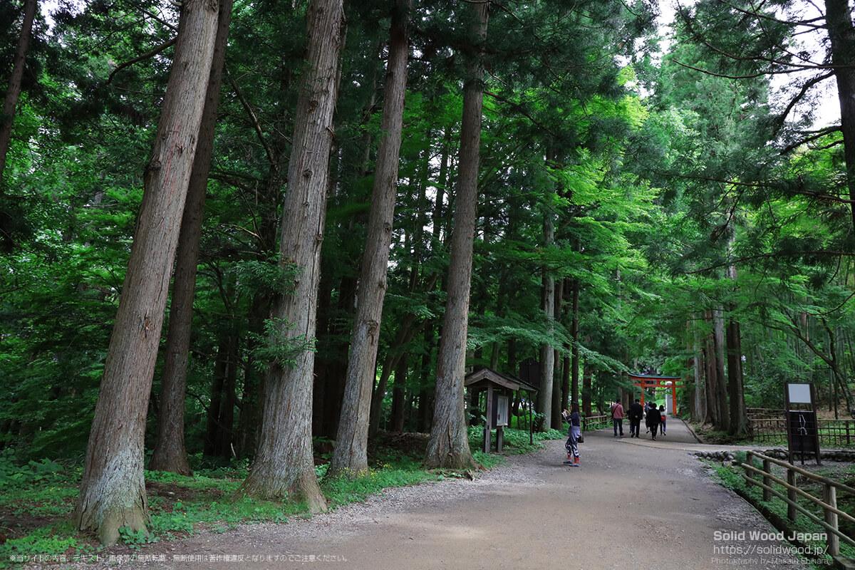 白山神社(中尊寺)