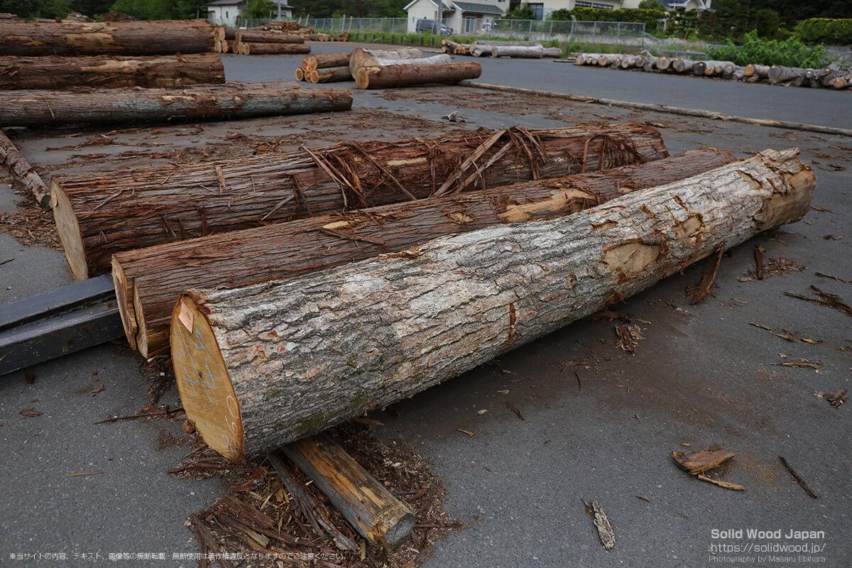一関木材流通センターを訪問