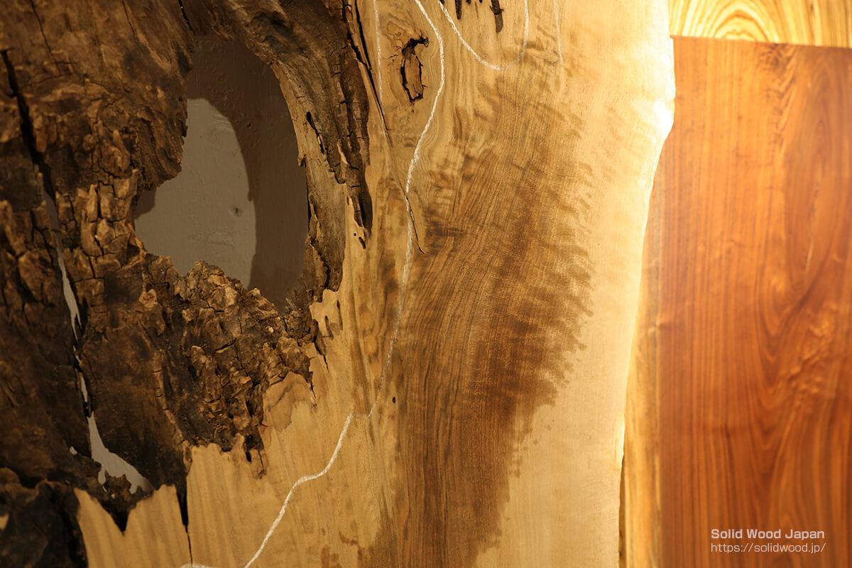 濡らした後のバストゥーンウォールナット(塗装後の状態を水で仮確認)