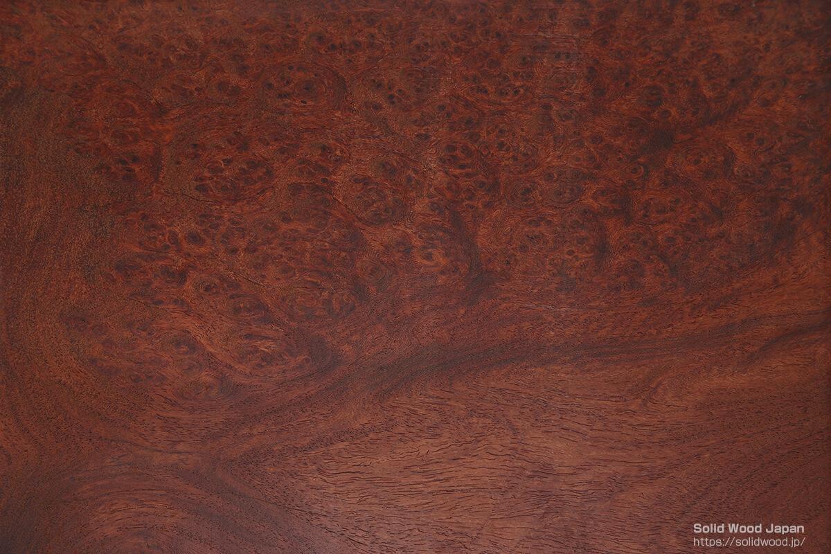 タイ産本花梨の幹瘤から取材した輪切り材