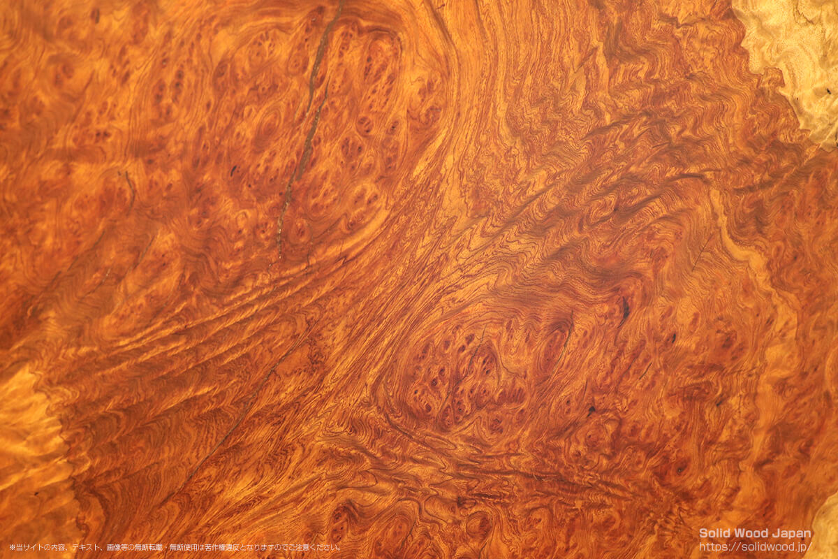 ブビンガ瘤杢の一枚板