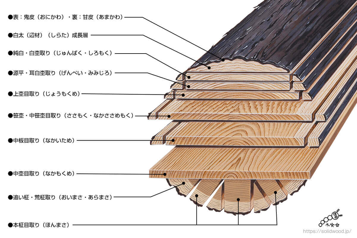 一本の杉原木からいろいろな杢目を木取る