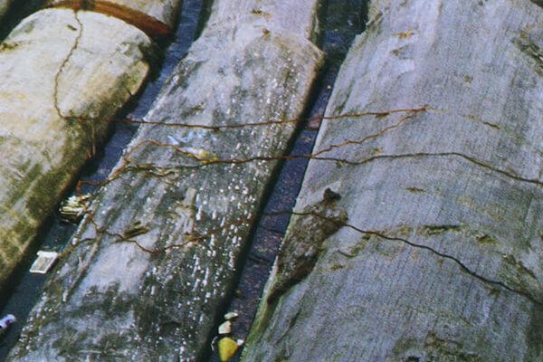 材木(ざいもく)屋と木材(もくざい)屋の違いについて