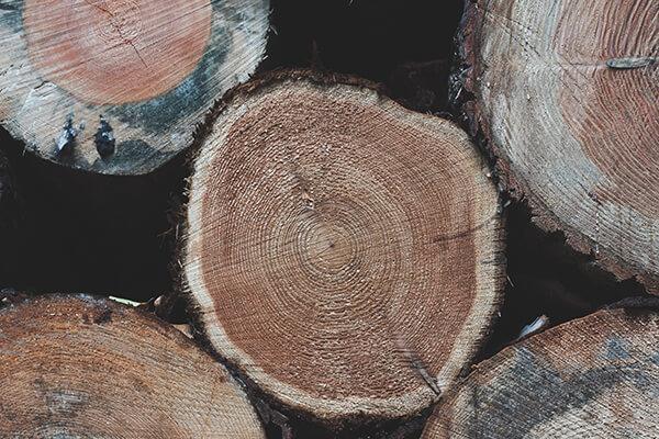 原木の製材について