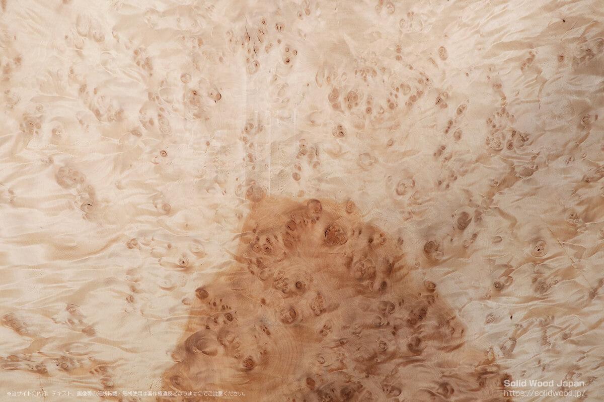 トチコブモク(栃瘤杢)の一枚板