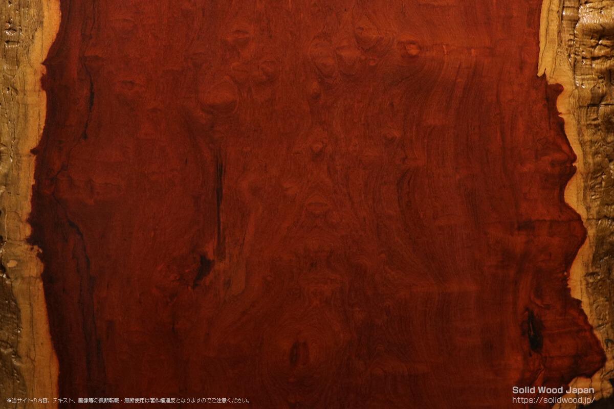 カリン(花梨)の一枚板