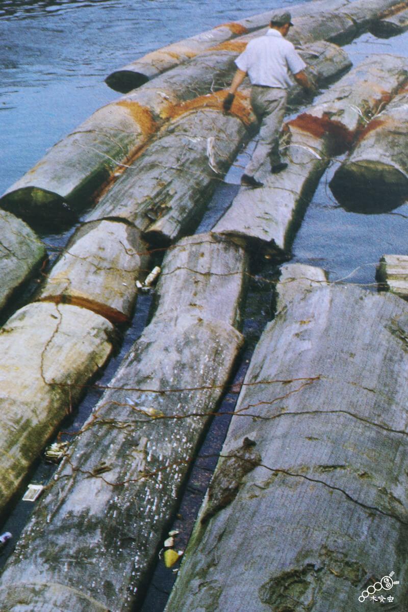 水路を通り原木を運搬・備蓄する
