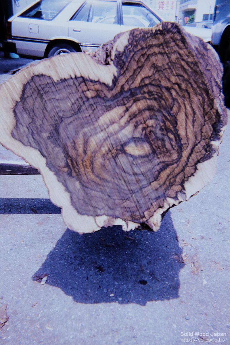 黒柿のめったに出現しないマーブル状の目の詰まった丸太の小口断面
