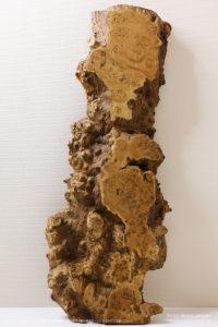 栗(クリ)瘤杢山梨県身延山産の一枚板
