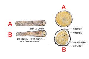 柾目の木取り
