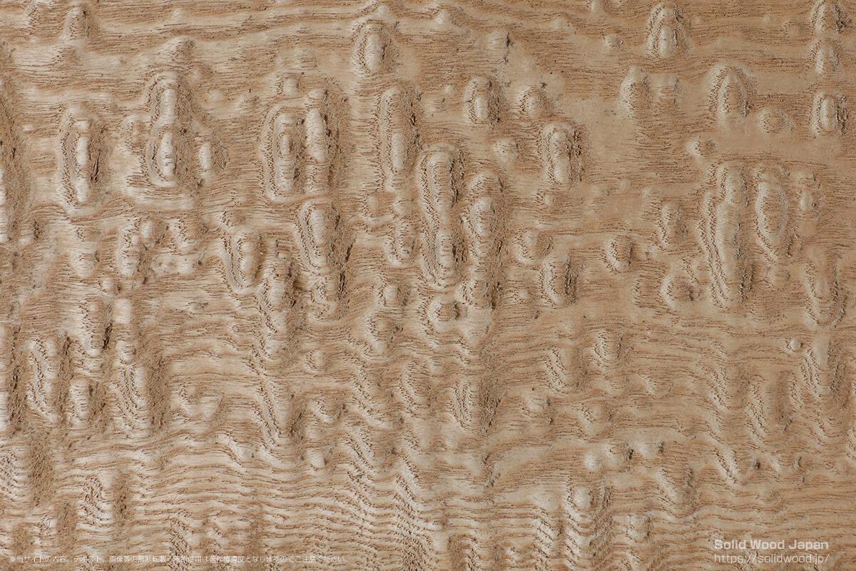 タモタマモク(佛玉杢)の一枚板