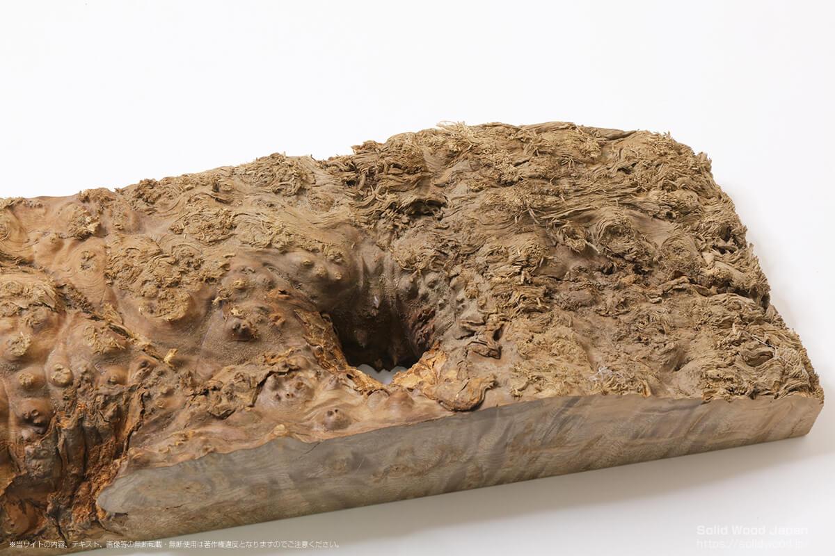 ウォールナット瘤杢の一枚板