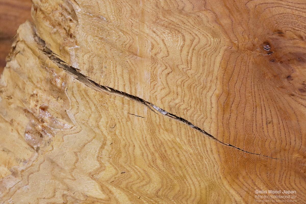 割れが発生している欅(ケヤキ)の一枚板