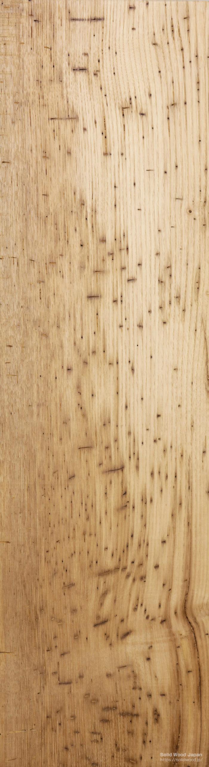 栗(くり)の板全体に虫喰いがある珍しい材