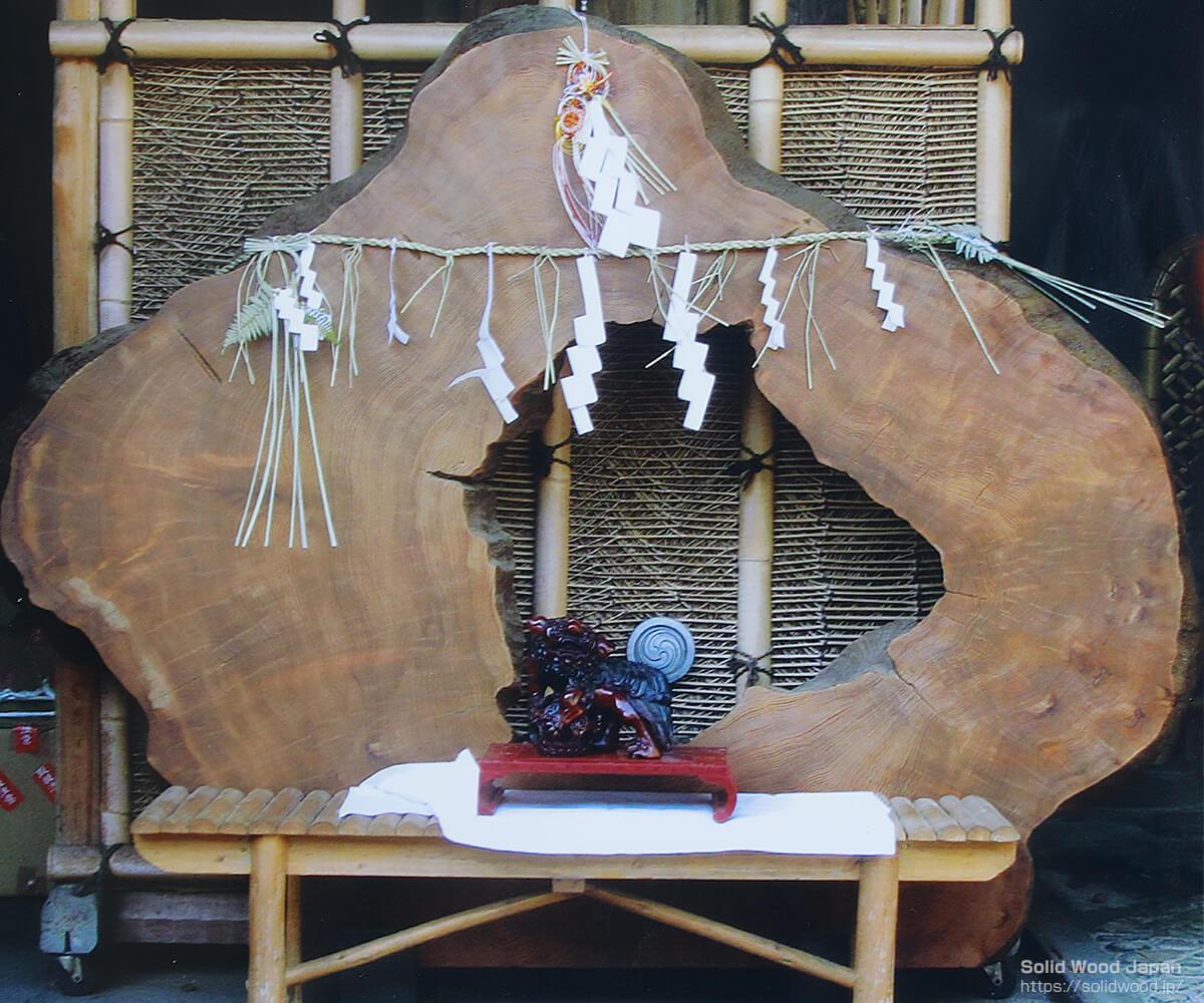 杉の年輪株飾り