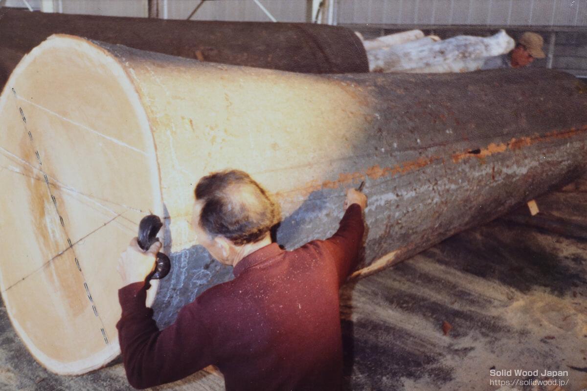 欅(ケヤキ)の丸太の本木取りの墨打ち(点線が本木取り線です)