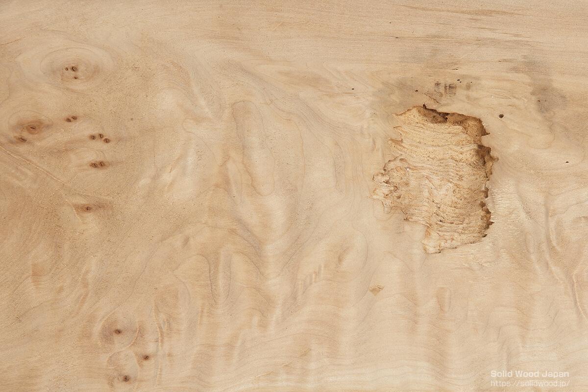 木材の欠点