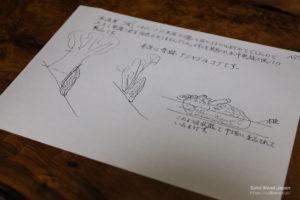栗瘤伐採時の図